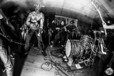 UltraMantis Black ©2013 Jamie Heim 21